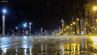 Photo of طقس الأربعاء.. أمطار مرتقبة بعدد من الأقاليم